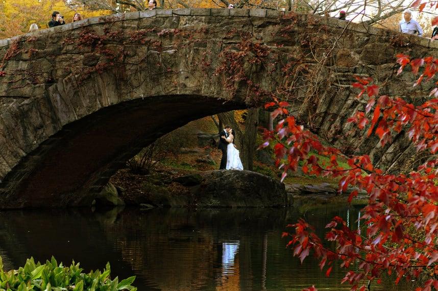 Central park photos pre wedding shoot
