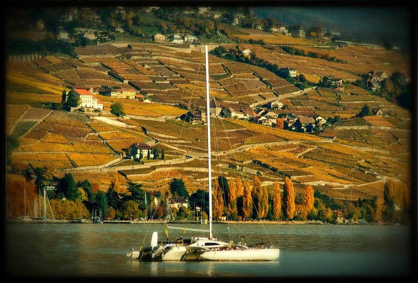 Wineries of Switzerland and amazing boats